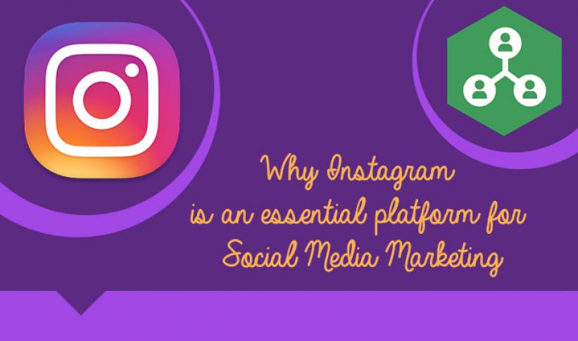 social-media-agency-in-gurugram